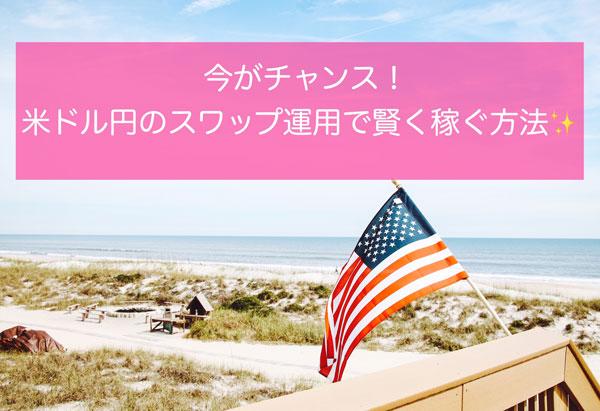 米ドル円 スワップ